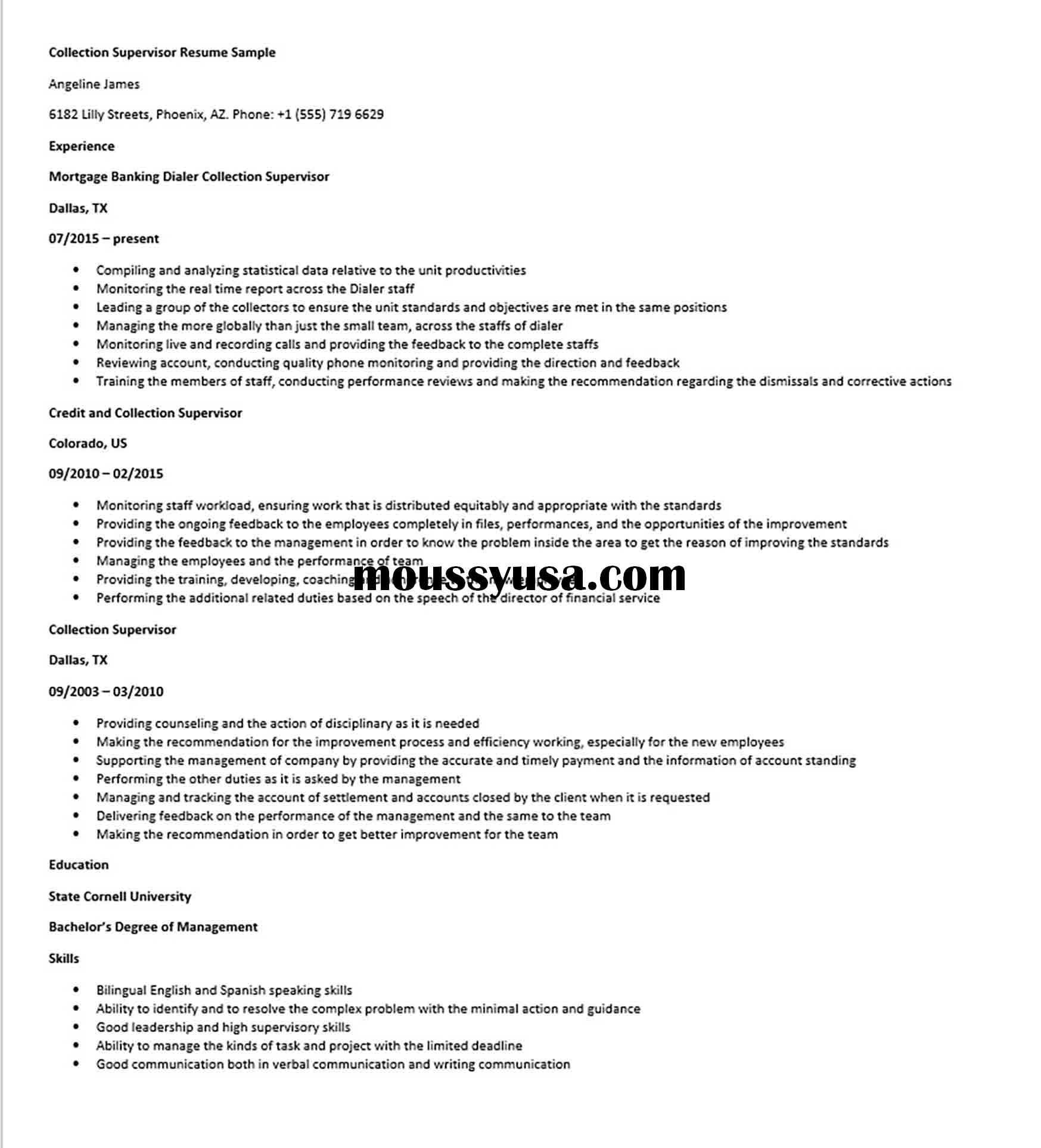 Collection Supervisor Resume Sample 1