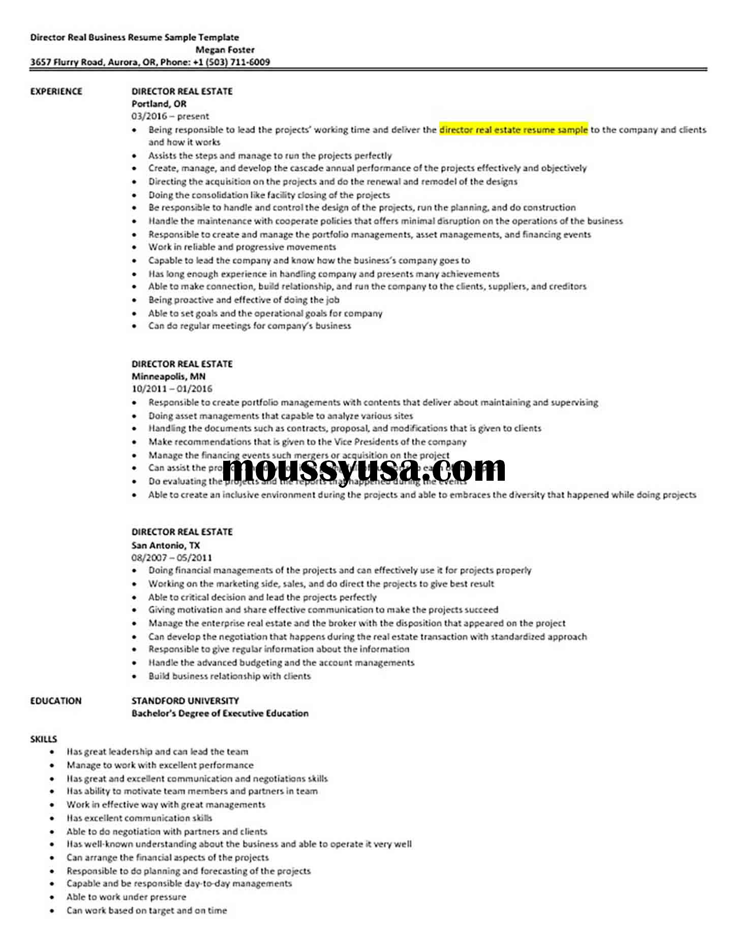 Director Real Business Resume Sample Template