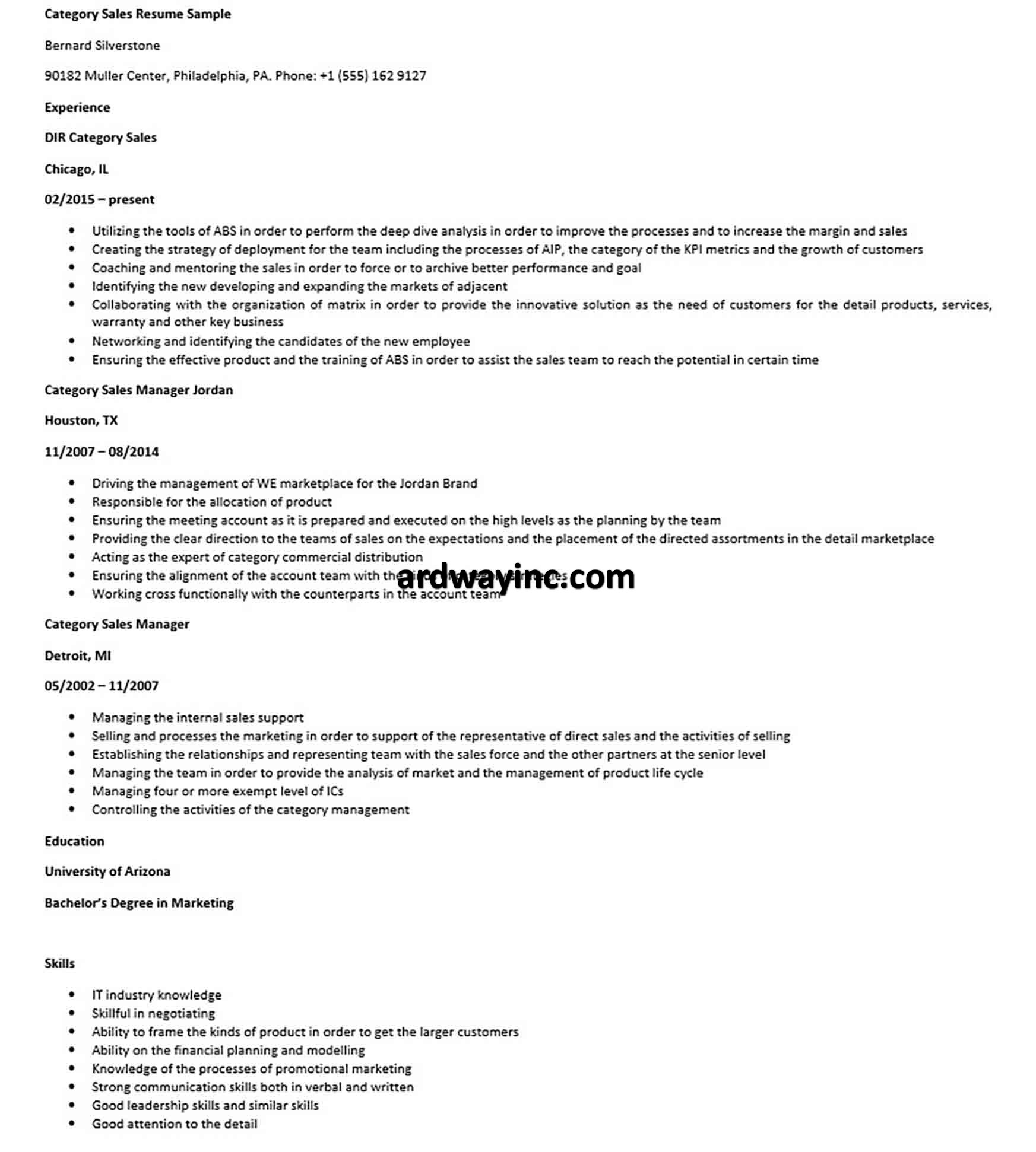Category Sales Resume Sample