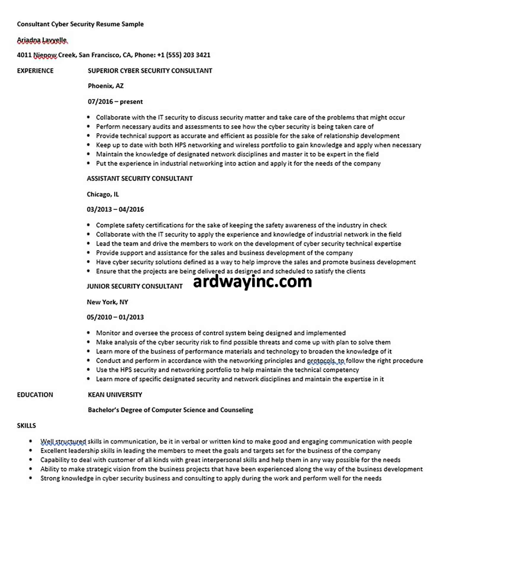 Consultant Cyber Security Resume Sample