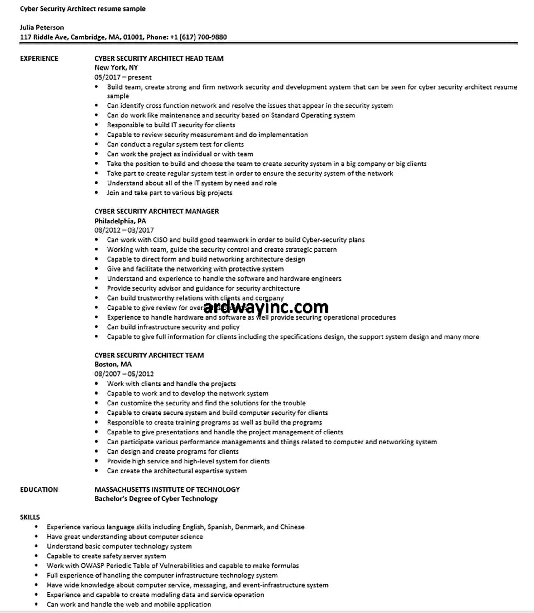 Cyber Security Architect resume sample