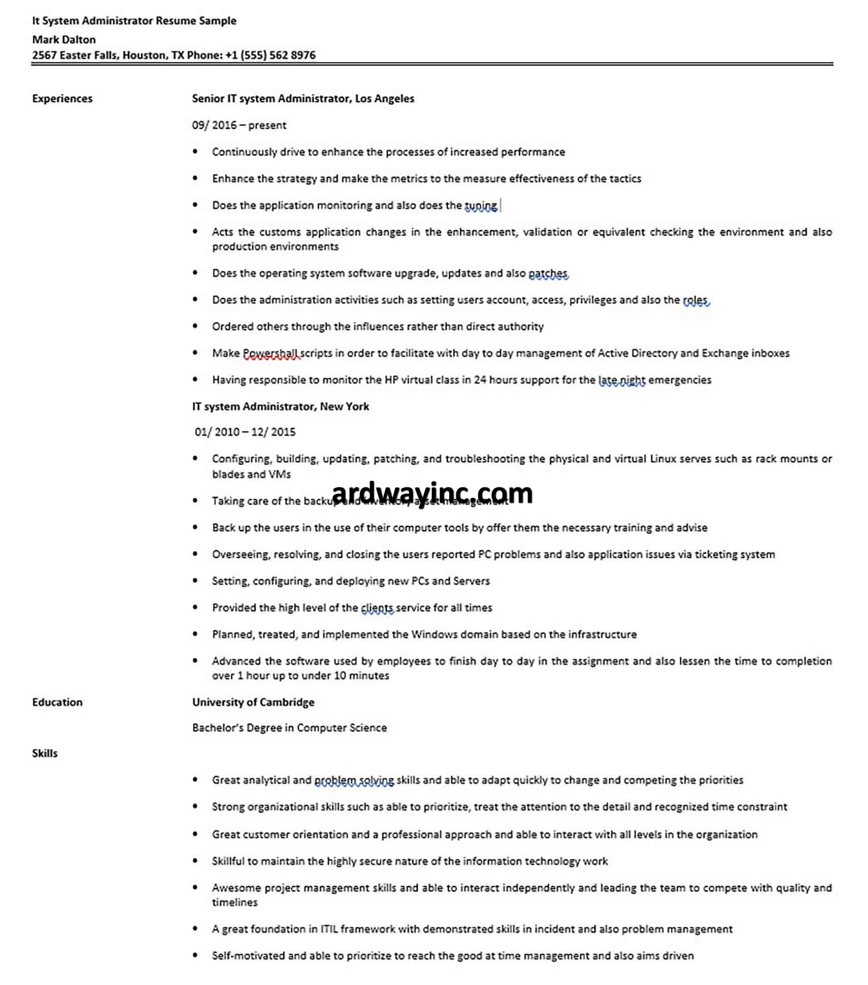 It System Administrator Resume Sample