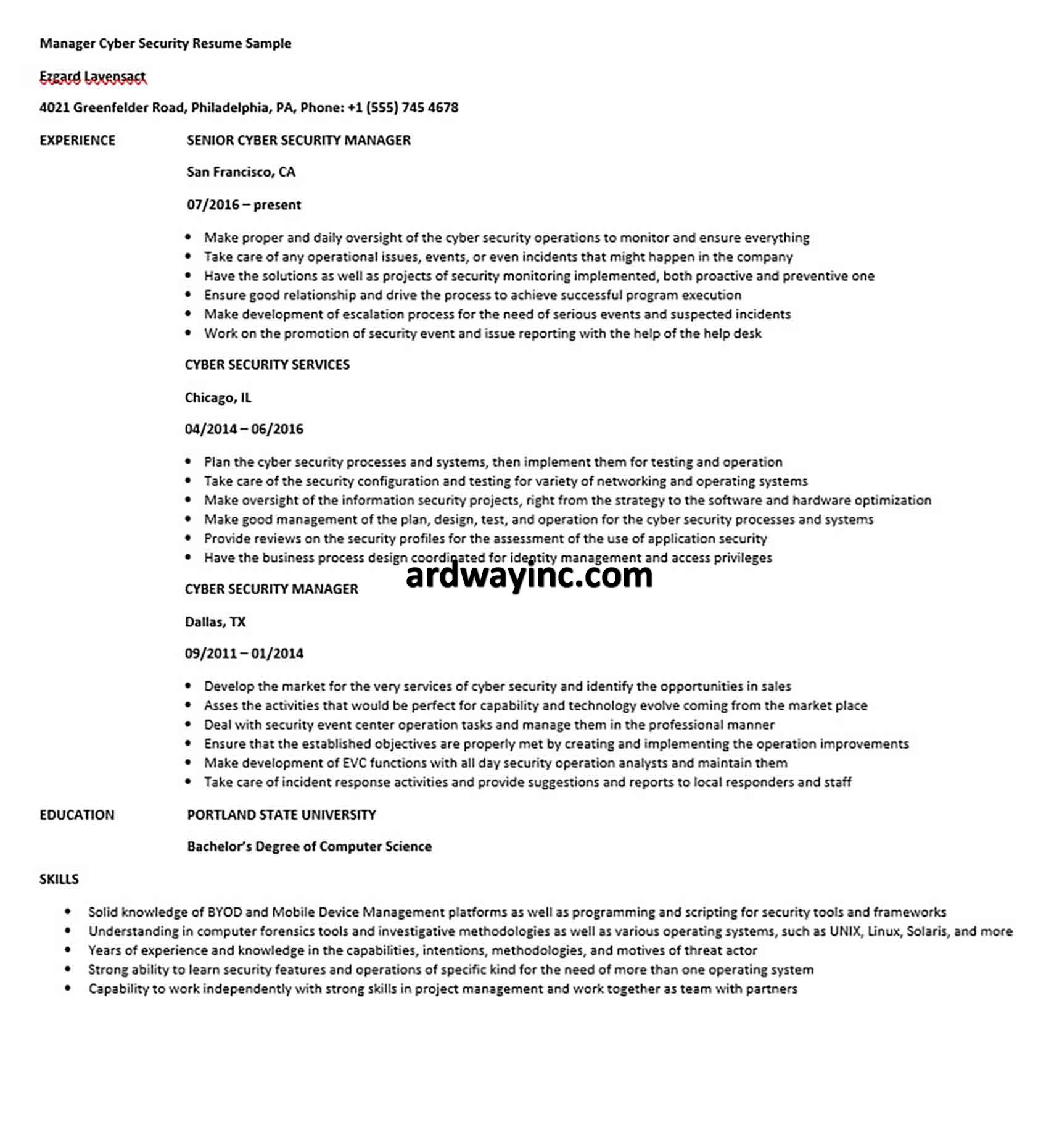 Manager Cyber Security Resume Sample