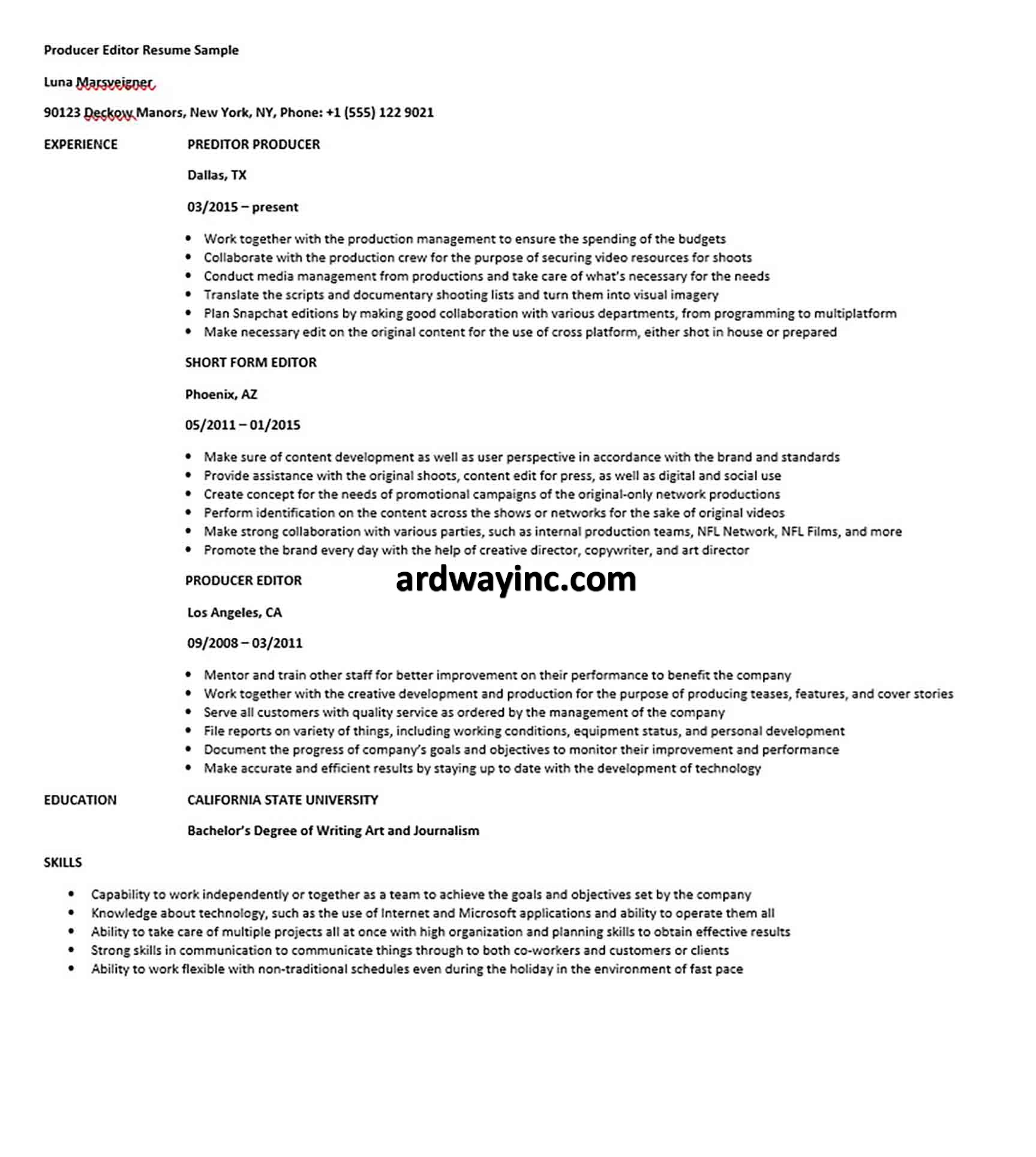Producer Editor Resume Sample