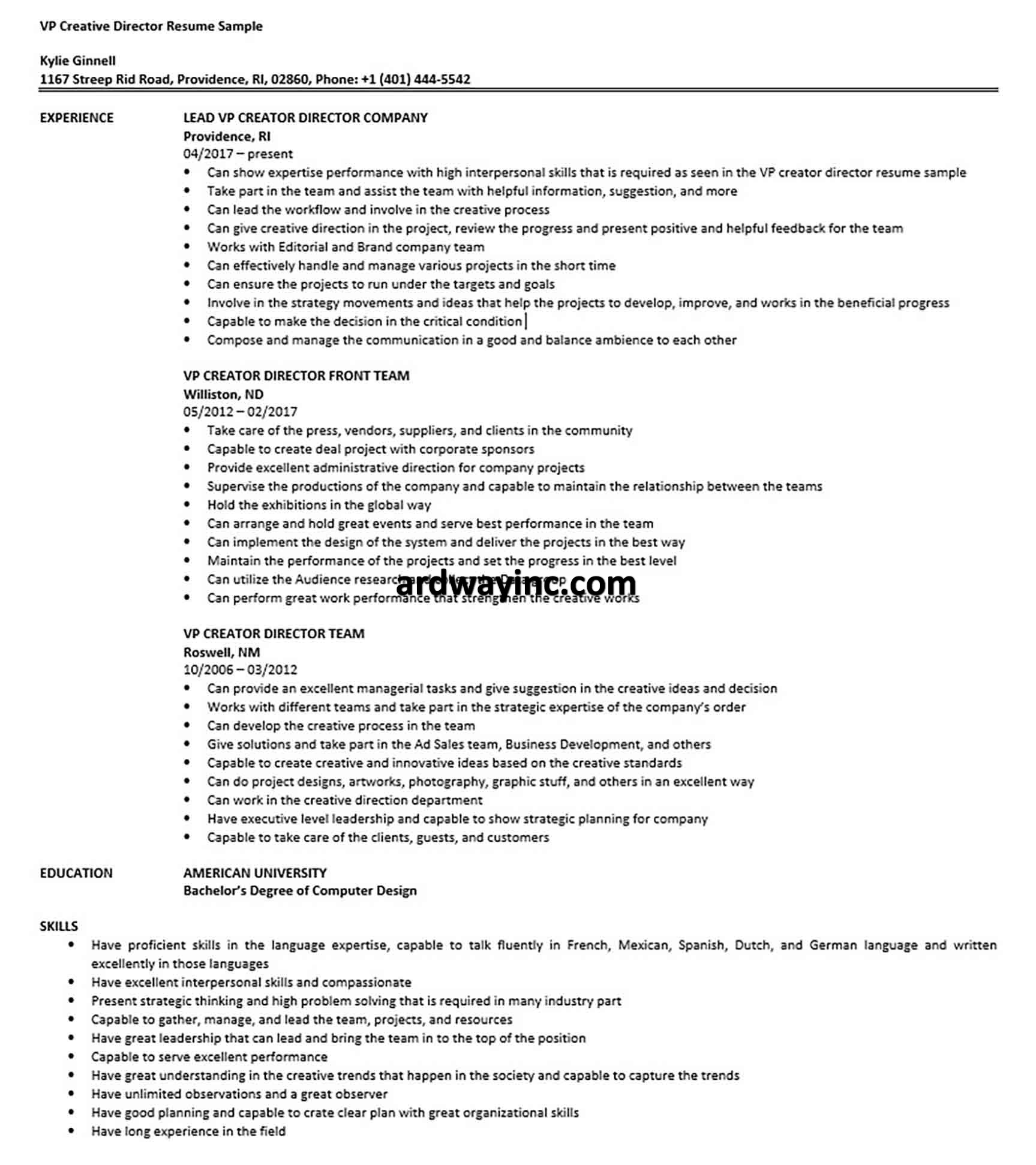 VP Creative Director Resume Sample