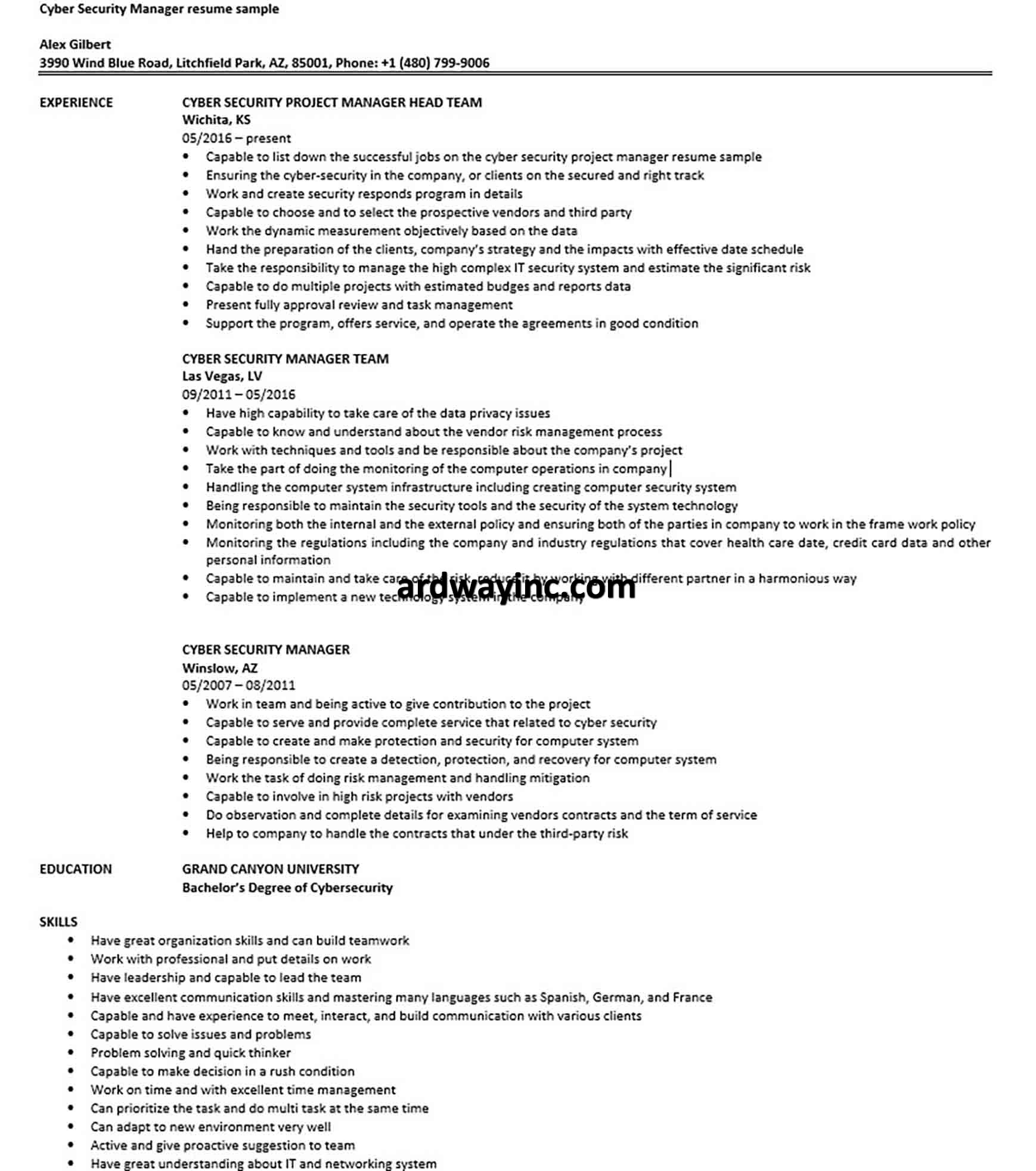 cyber security project manager resume sample