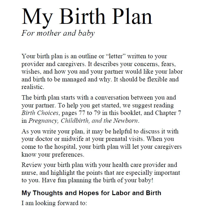 Birth Plan Template 36