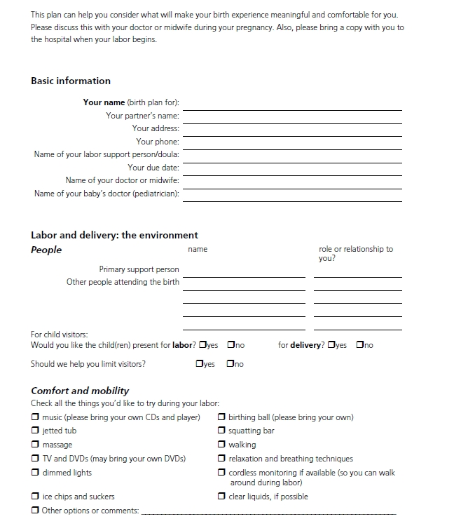 Birth Plan Template 38