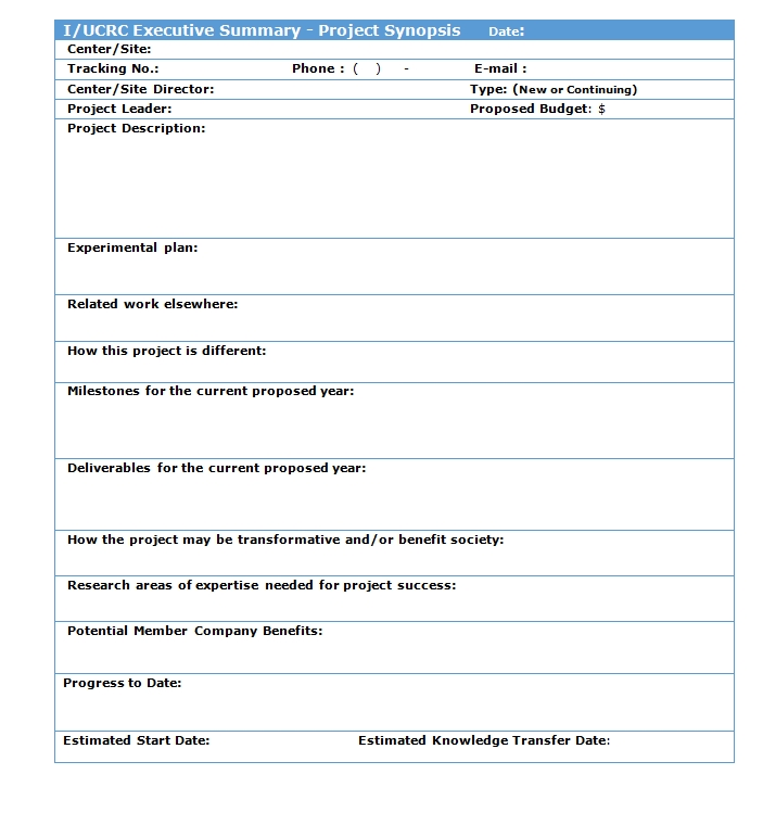 Executive Summary Template 03