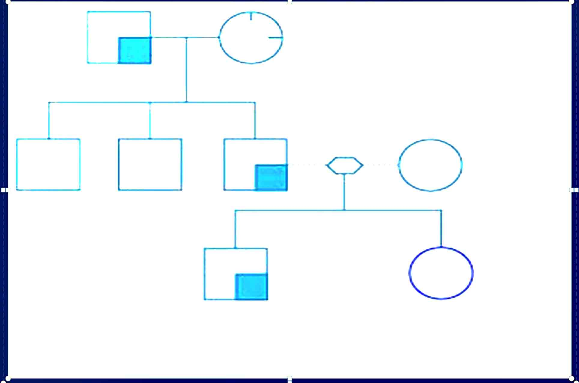 Genogram Template 24