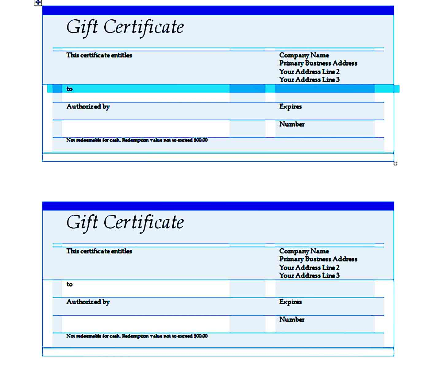 Gift Certificate Template 24