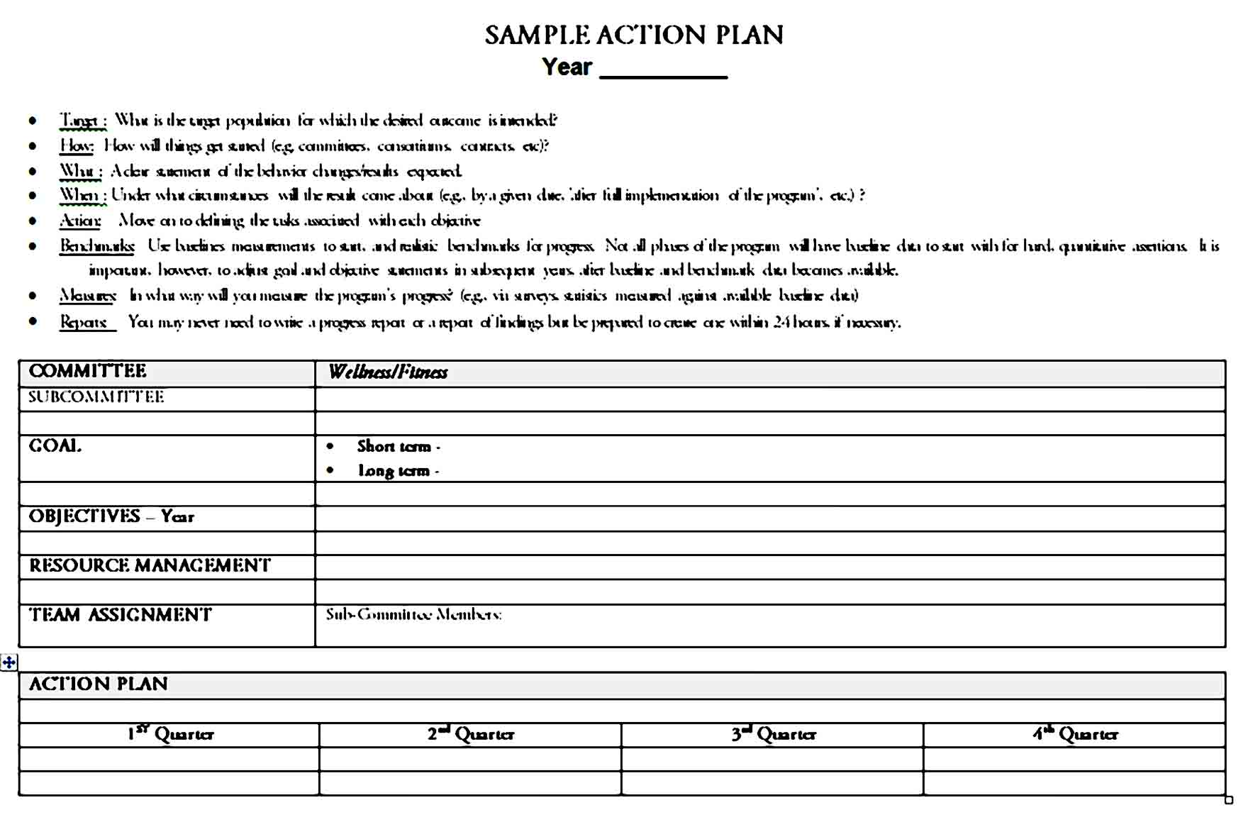 action plan template 28