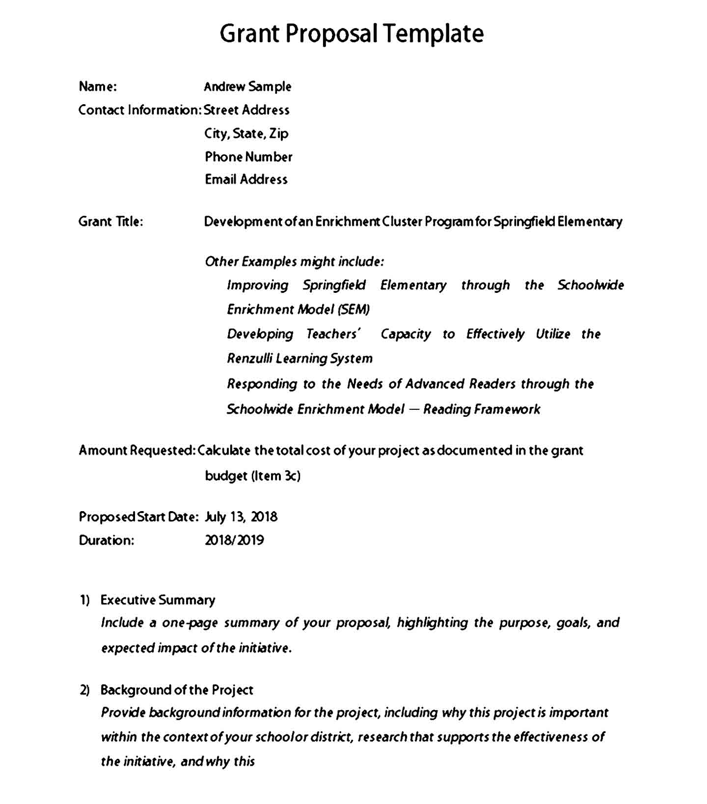 grant proposal template 03