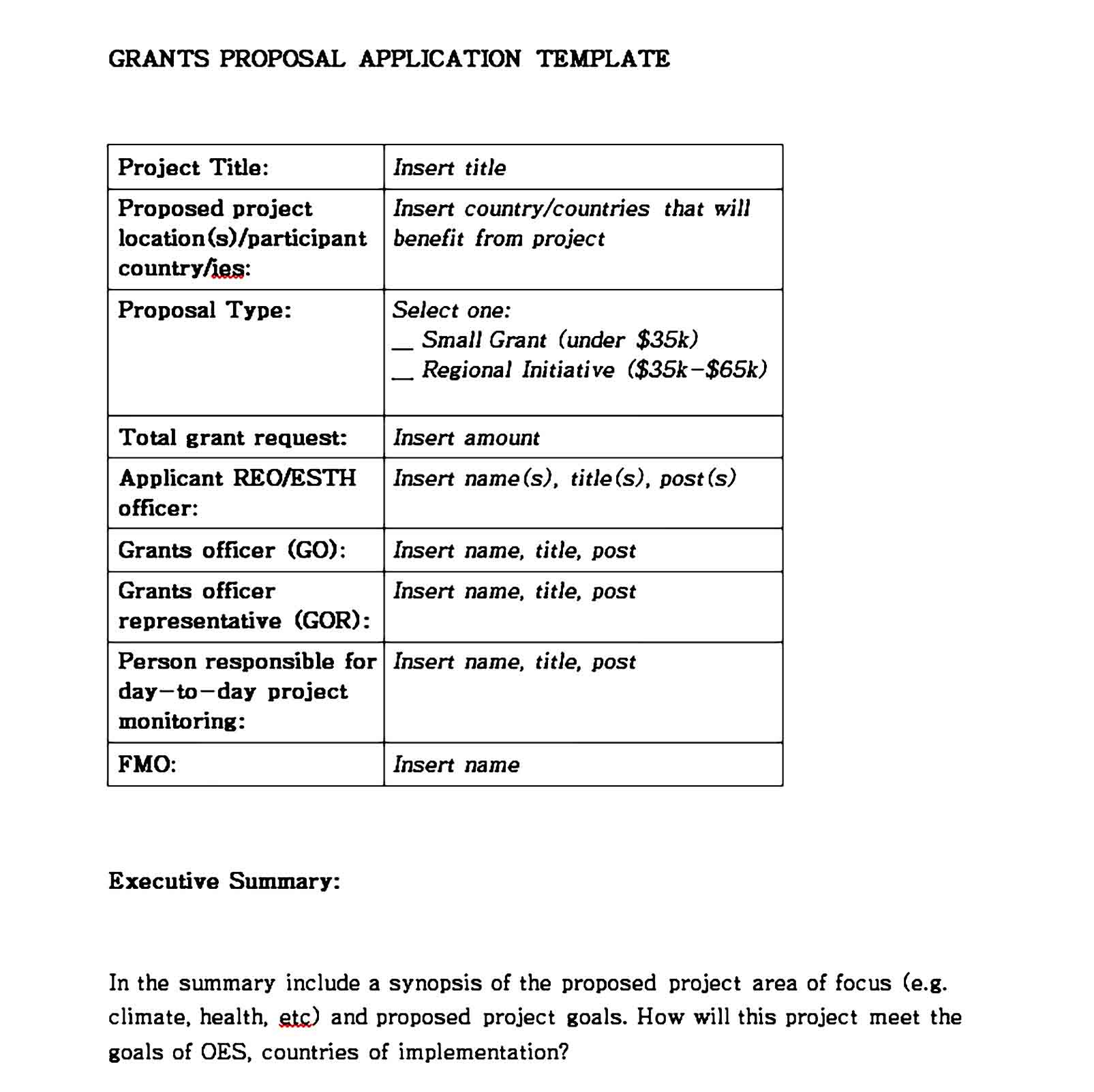 grant proposal template 08