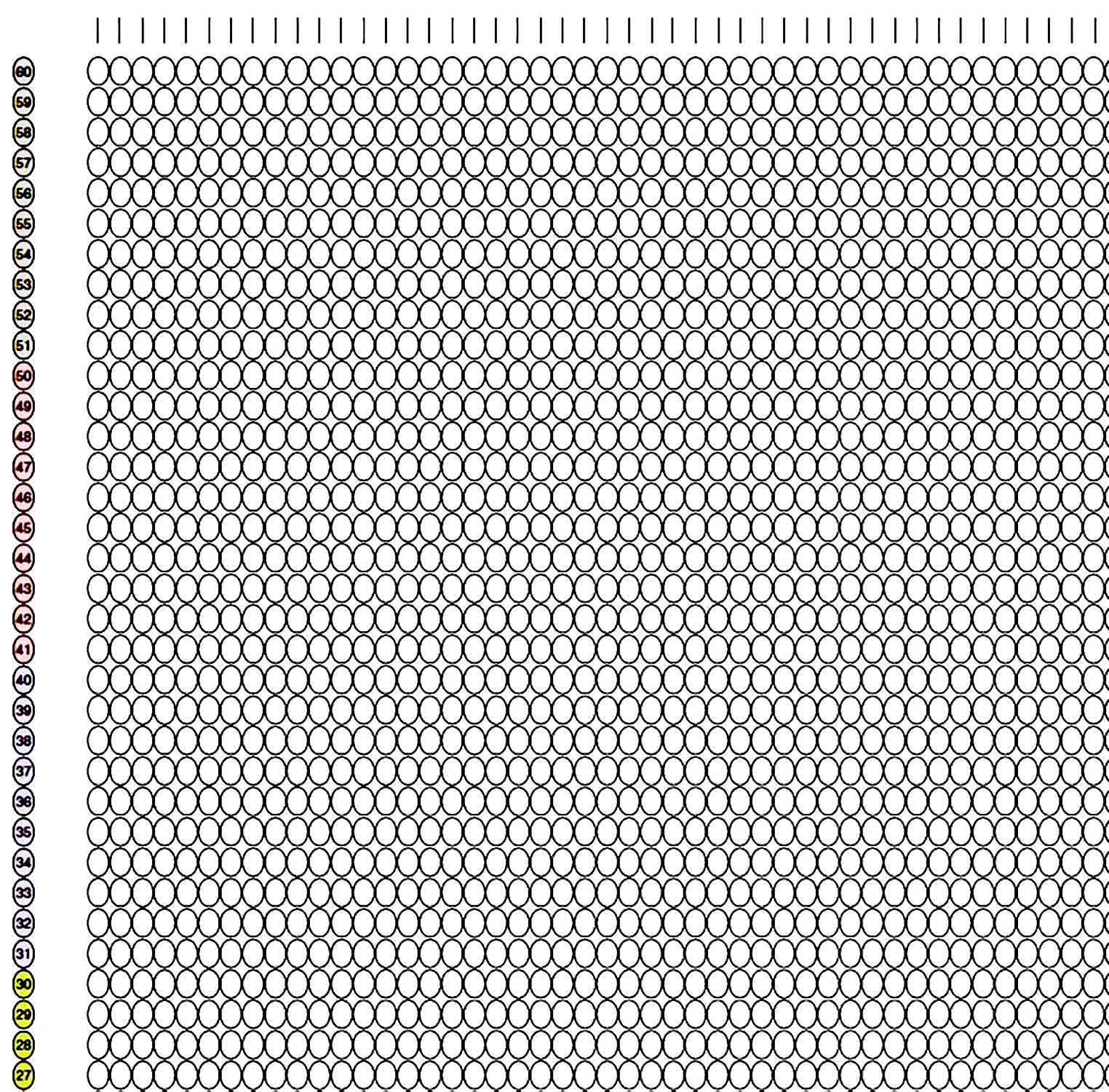 graph paper template 30