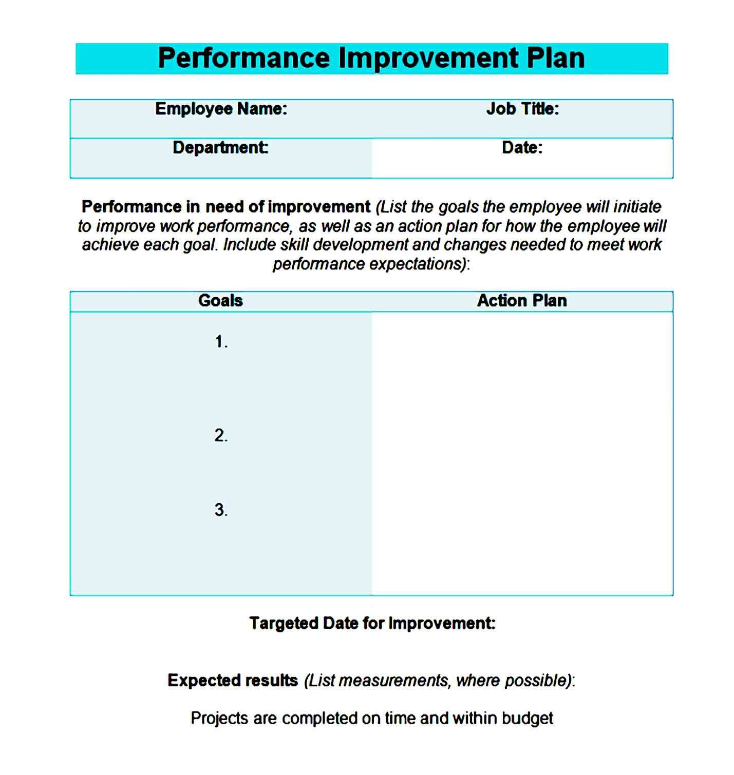 performance improvement plan template 17
