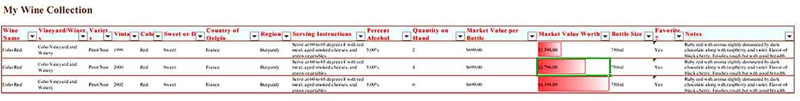 An Excel Format Wine Collection Inventory Template