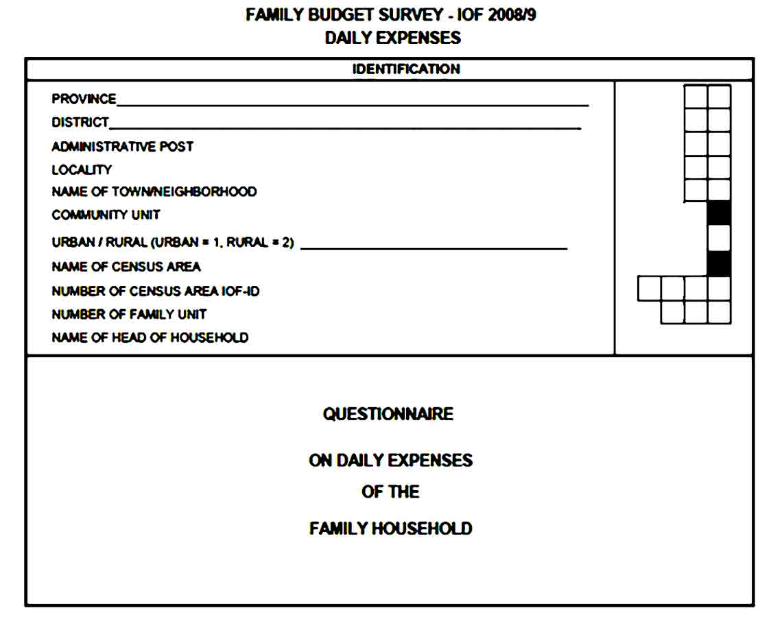 Daily Expenses Budget