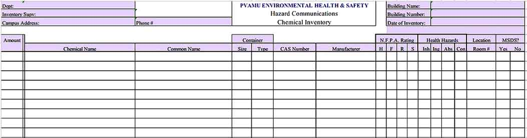 Healty Chemical Inventory Template Example Format