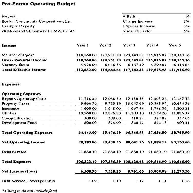 Pro Forma Operating Budget Template
