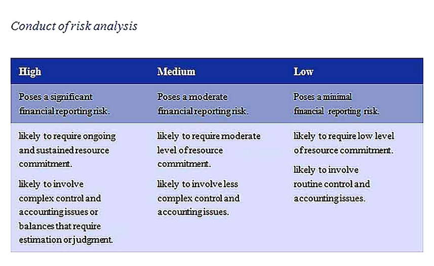 Templates for Financial Statement Risk Analysis Sample