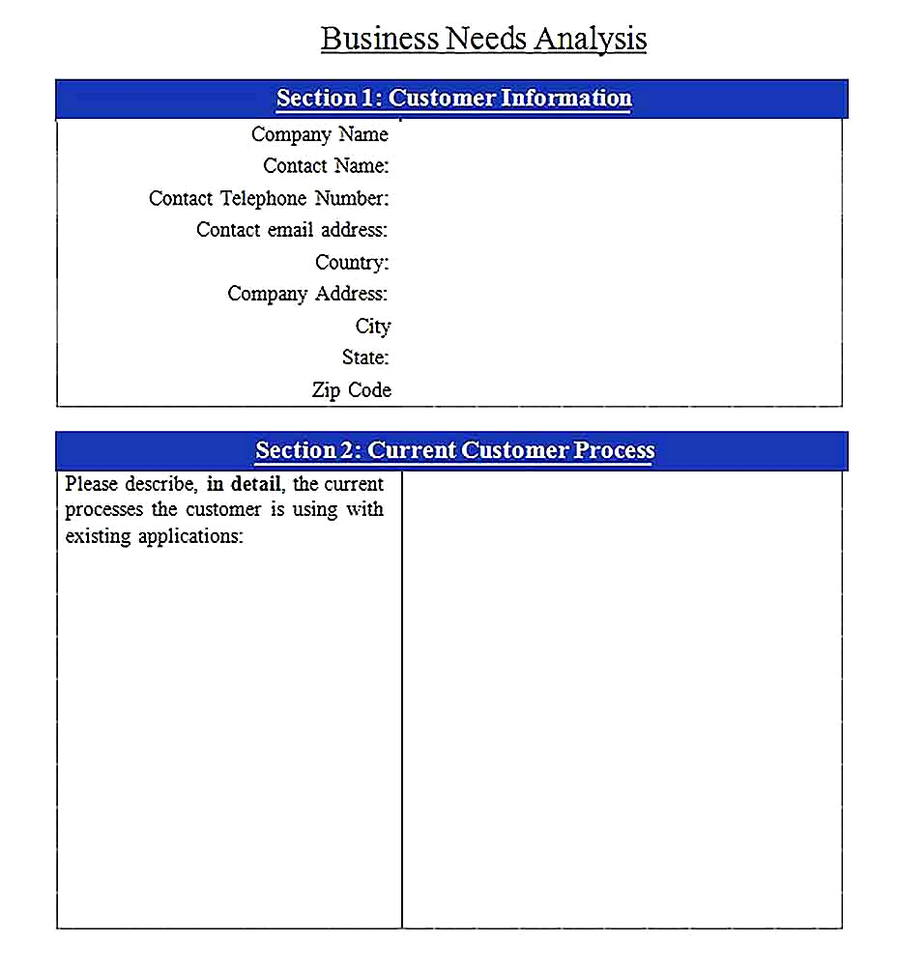 Templates for of Business Needs Analysis Sample