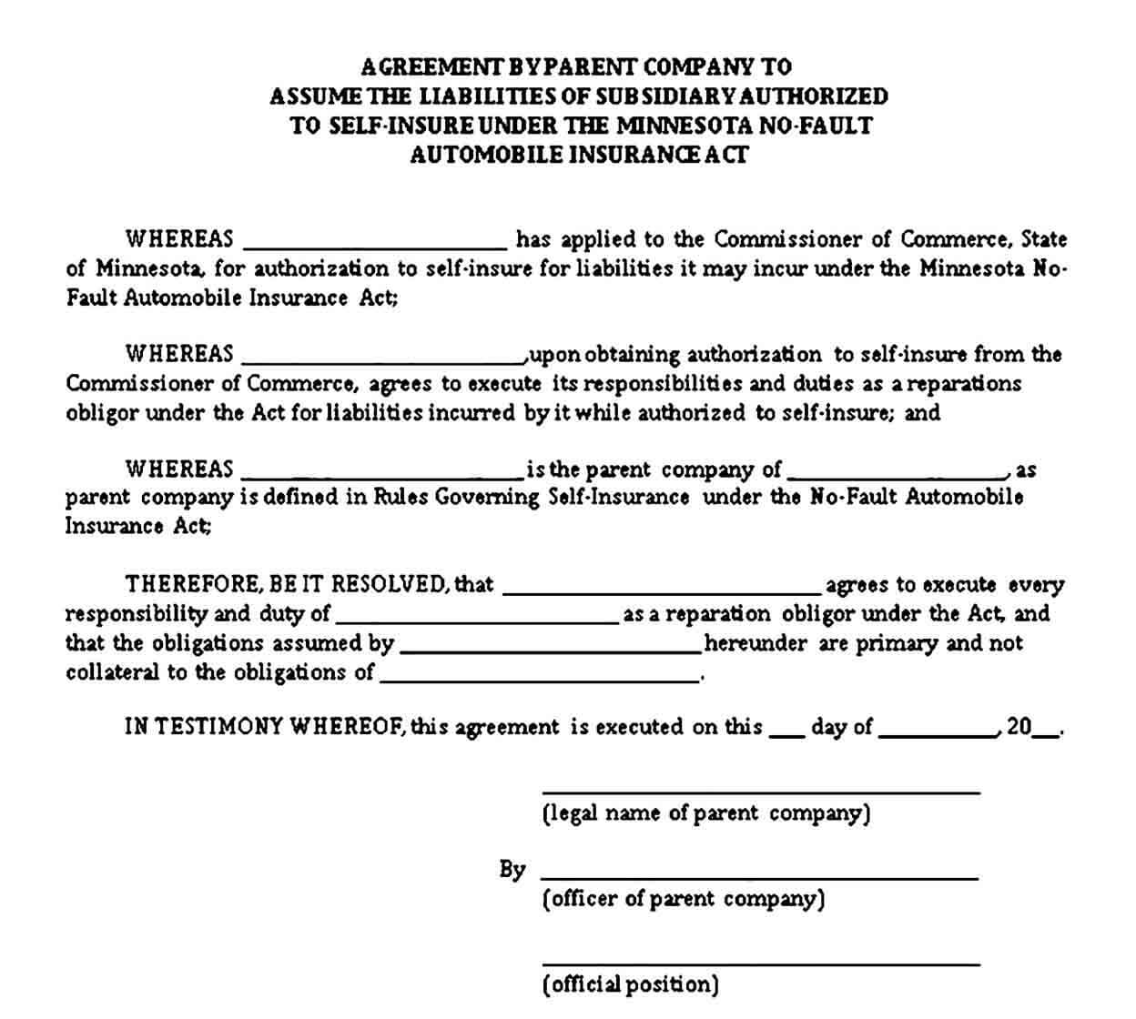Standard Subsidiary Agreement Template