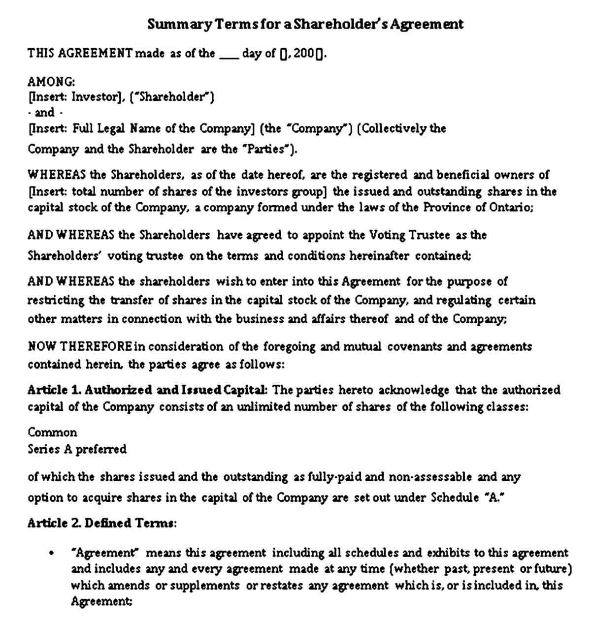 Summary Terms for Shareholders Agreement Template