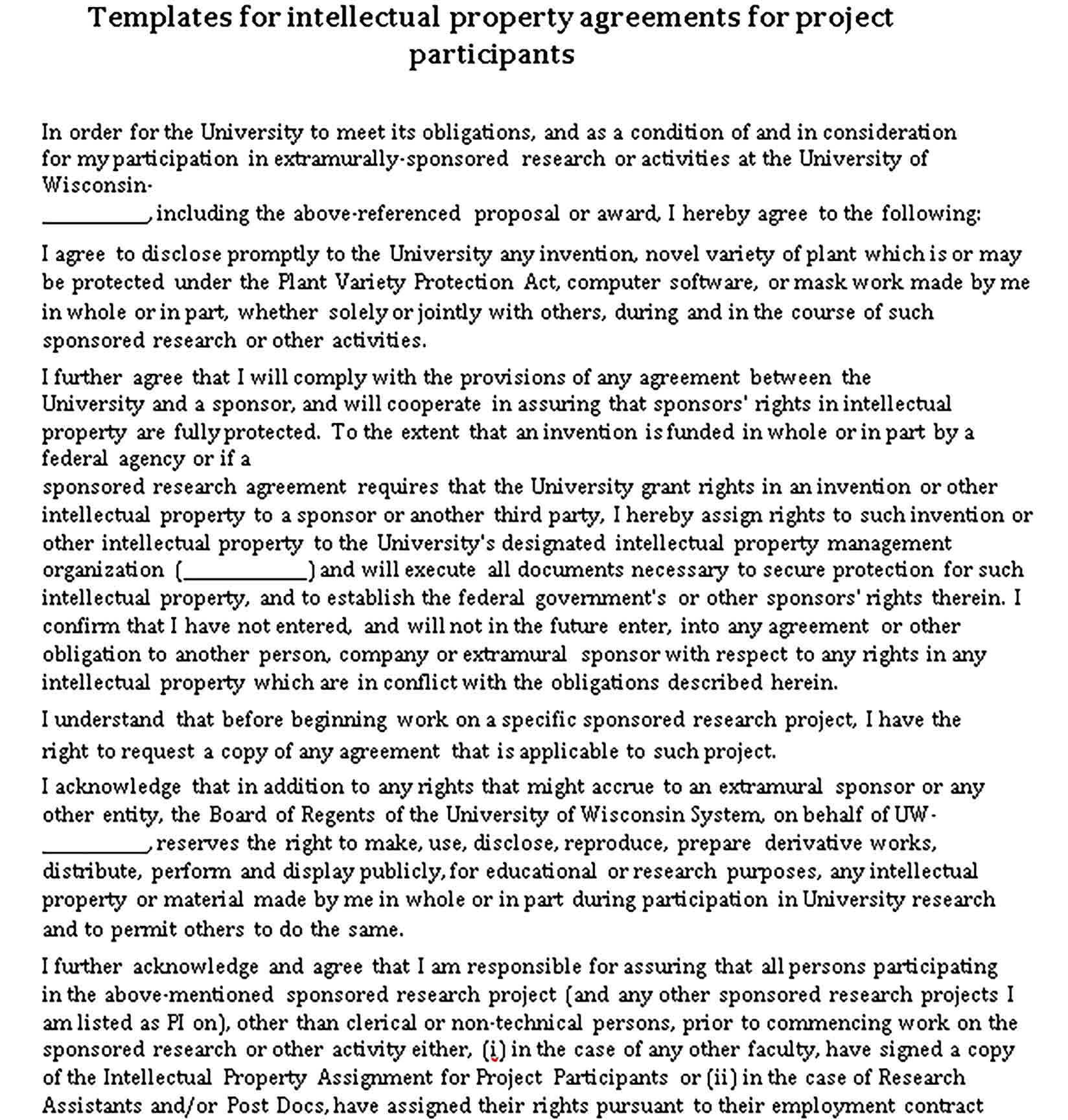 Templates Basic Intellectual Property Agreement Sample