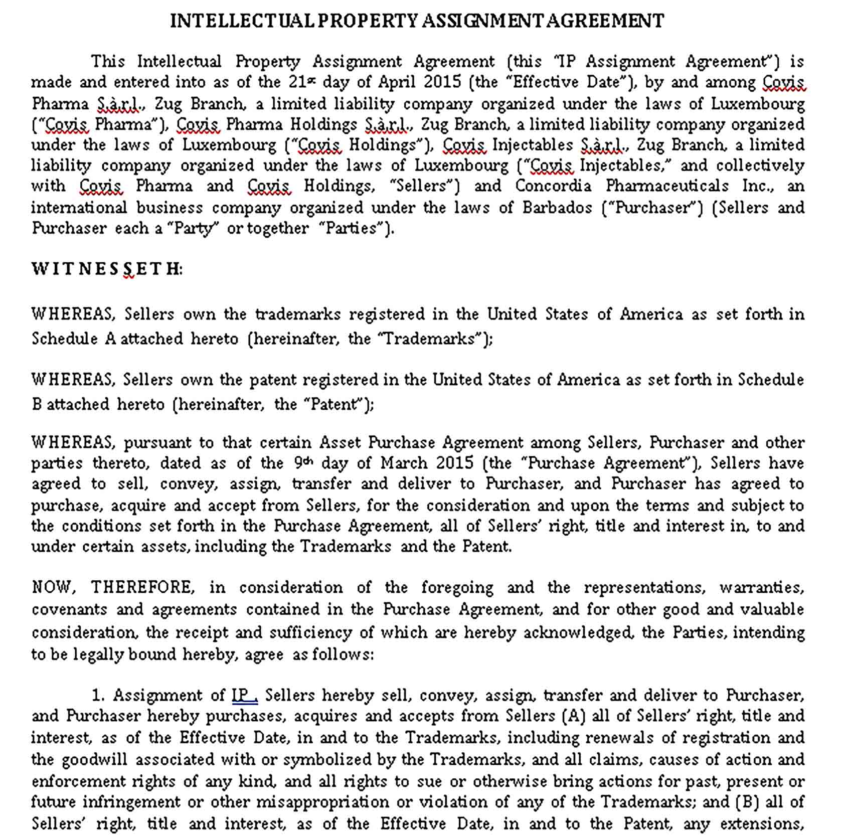 Templates Intellectual Property Assignment Agreement in Sample