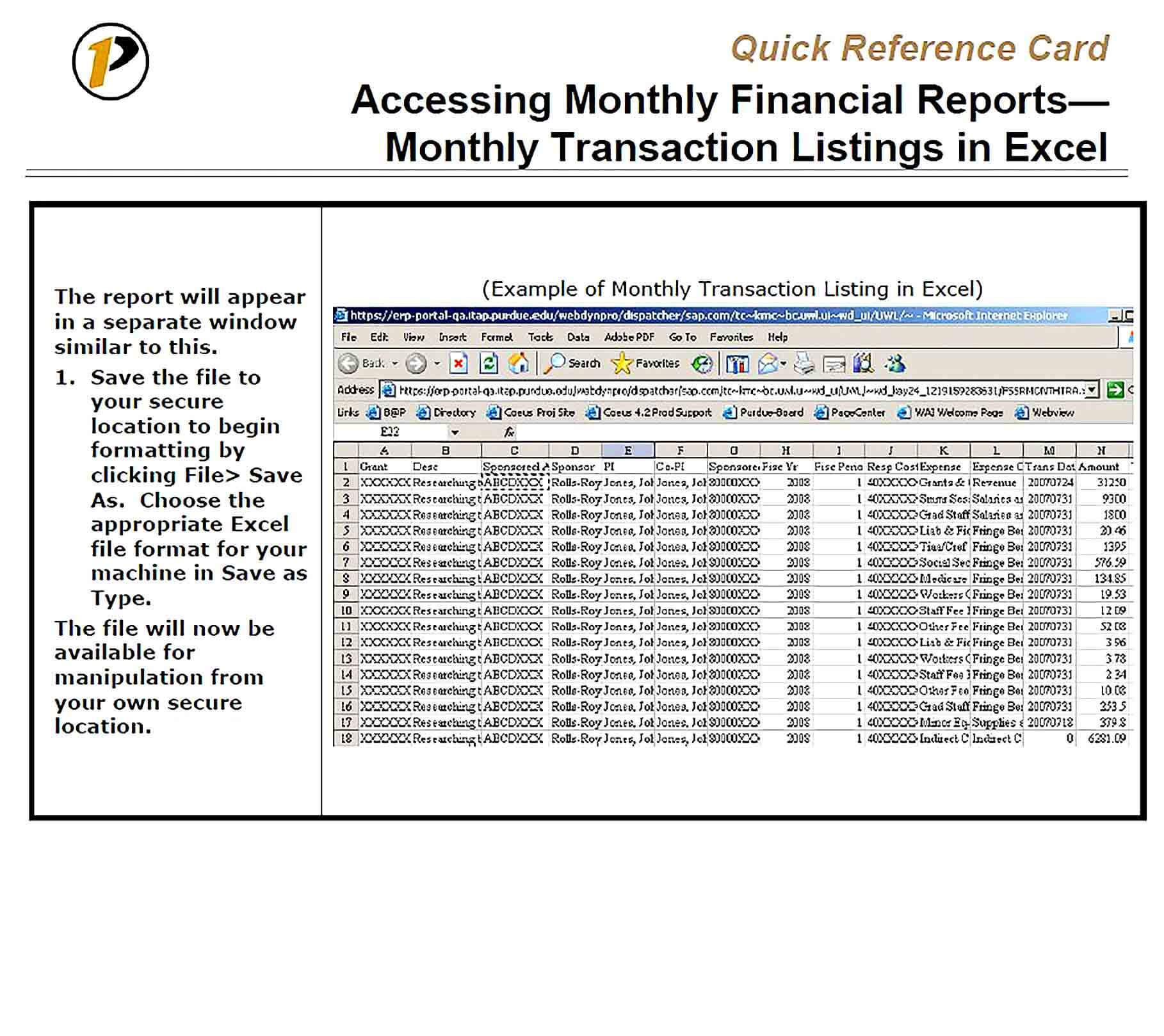 Sample Access Monthly Report Template