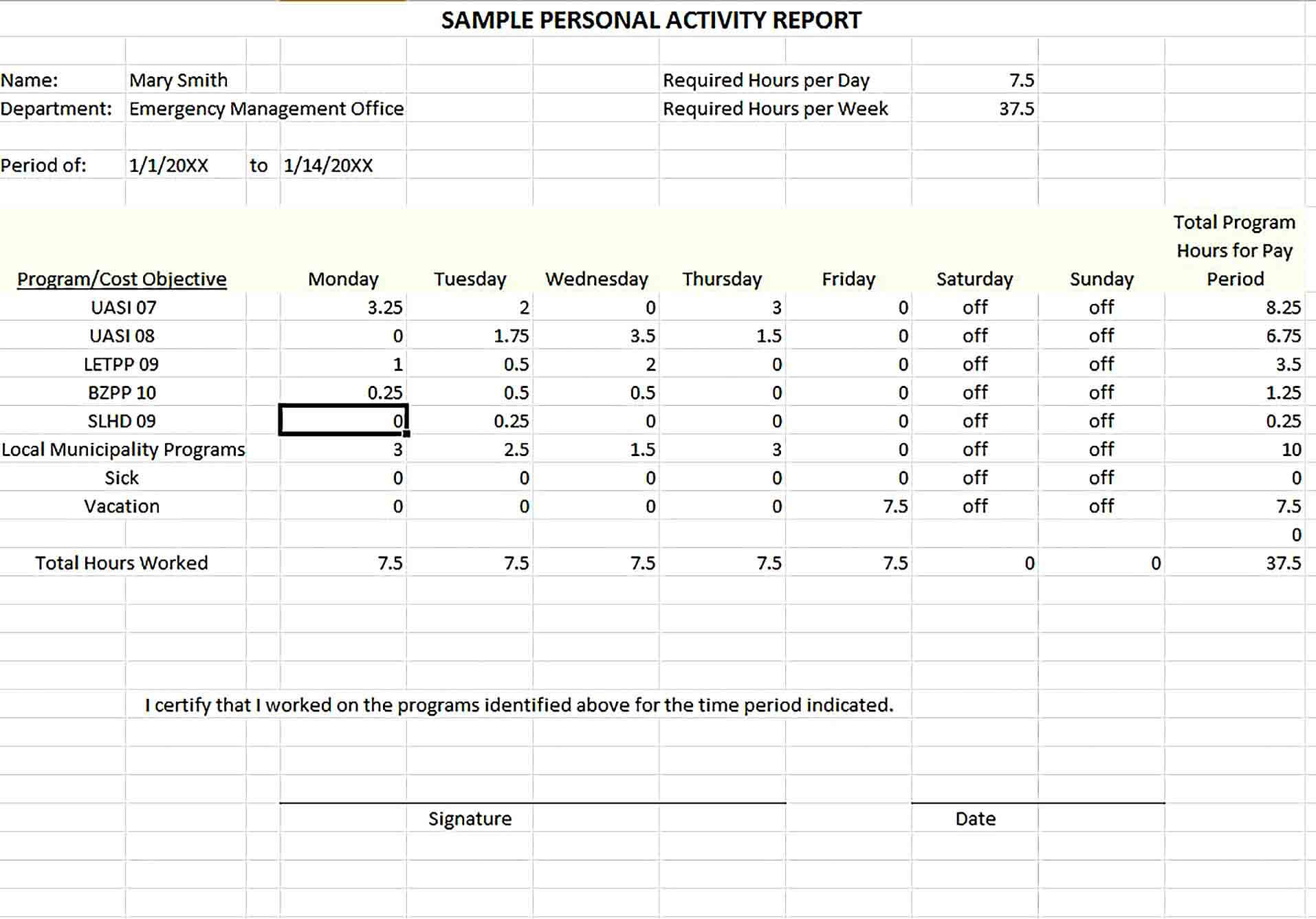 Sample Activity Report Template Excel