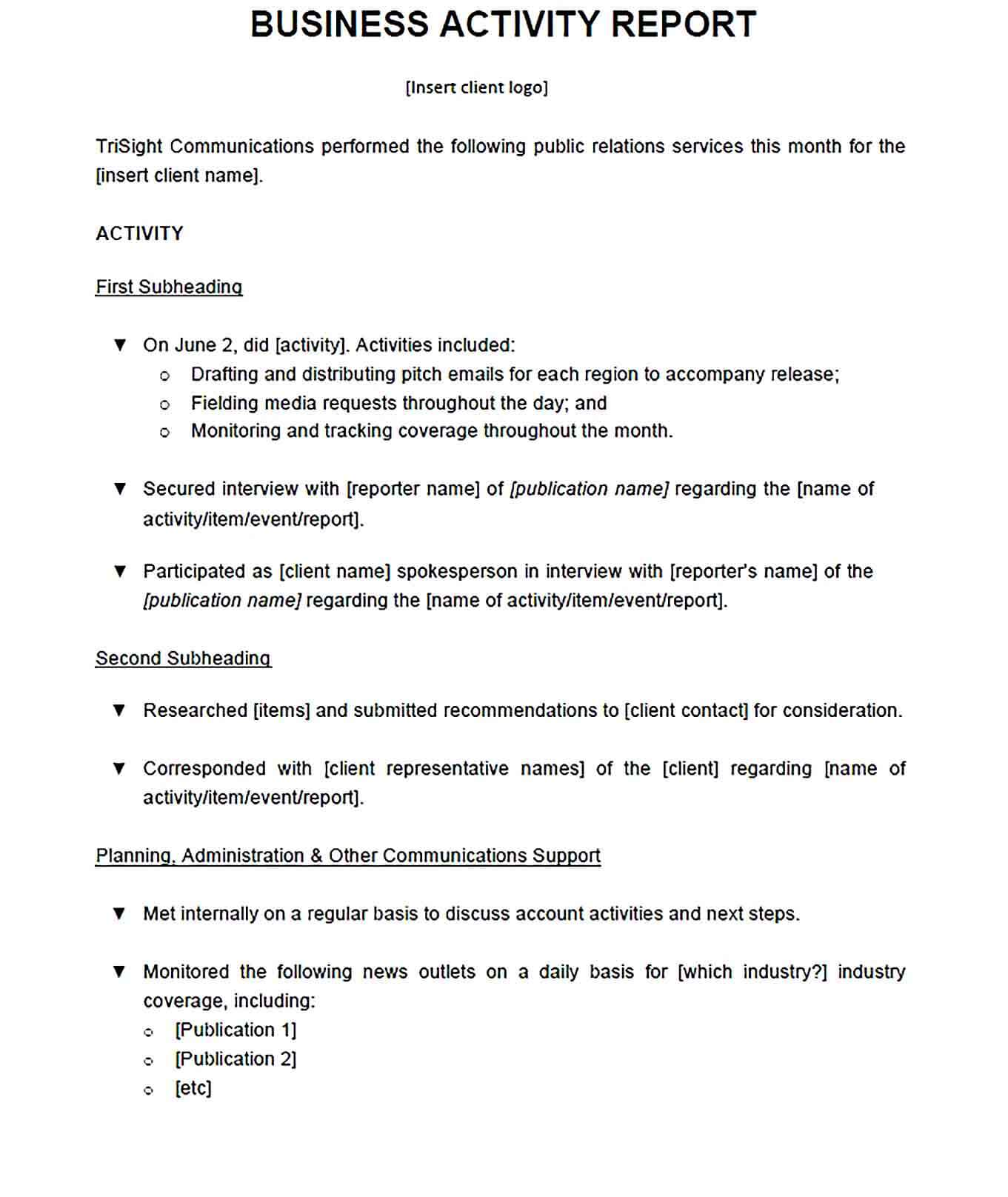 Sample Business Activity Report Format