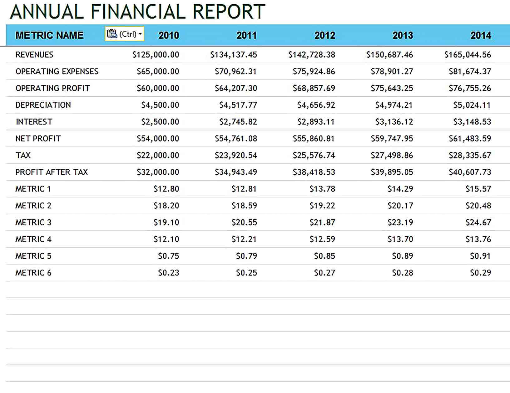 Sample Company and Financial Annual Template