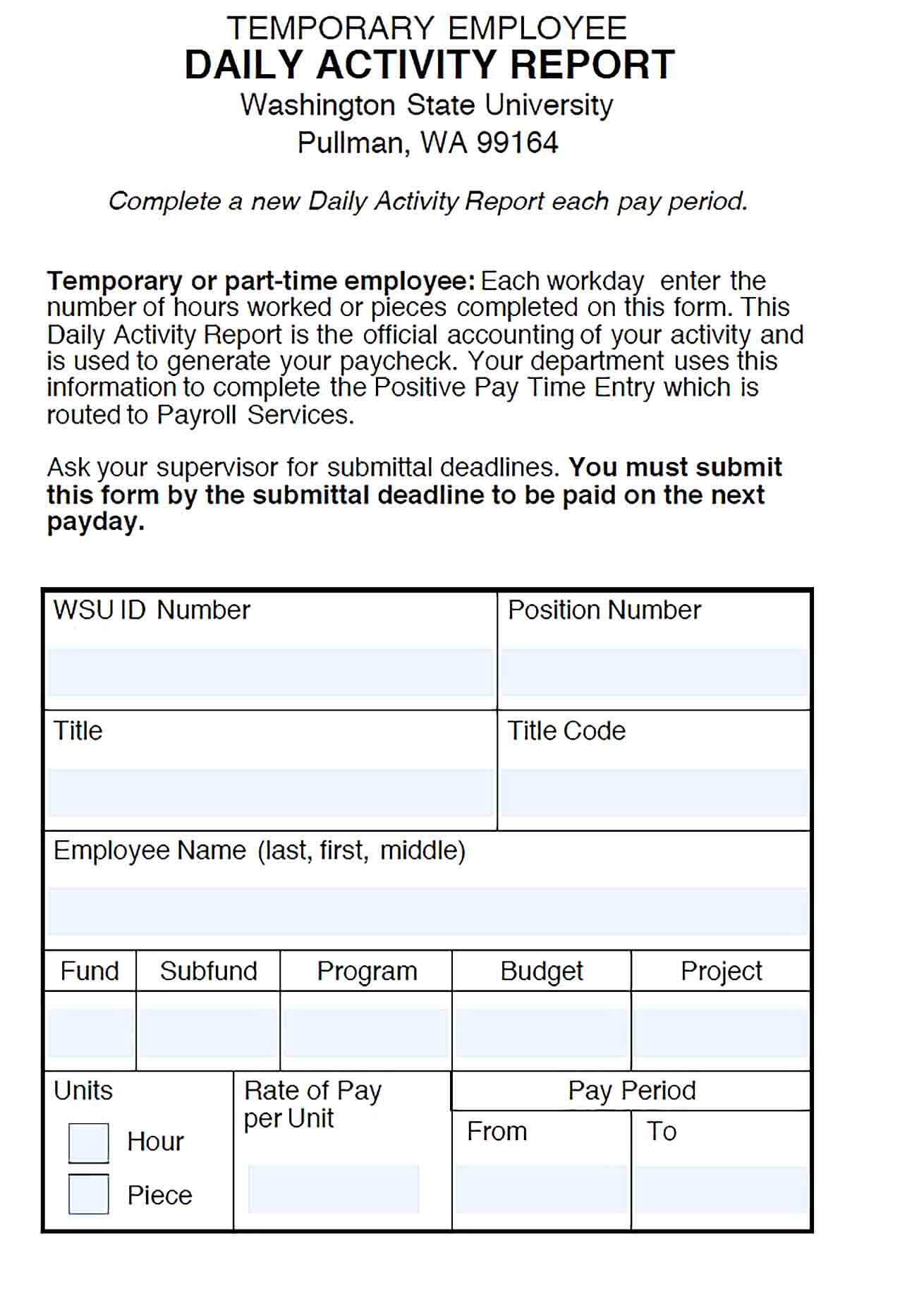 Sample Daily Activity Report for Temporary Employee Template