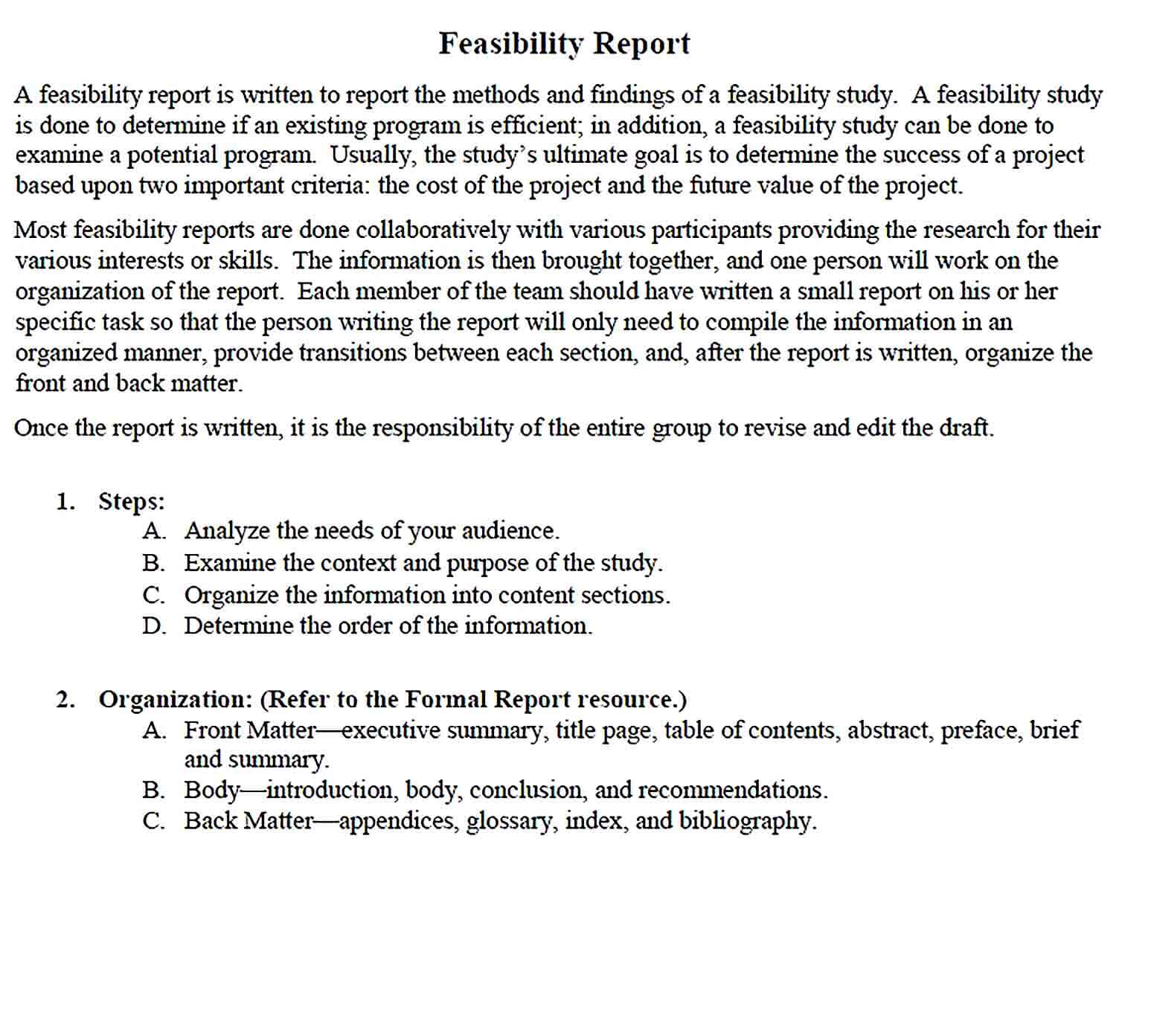 Sample Feasibility Report Template