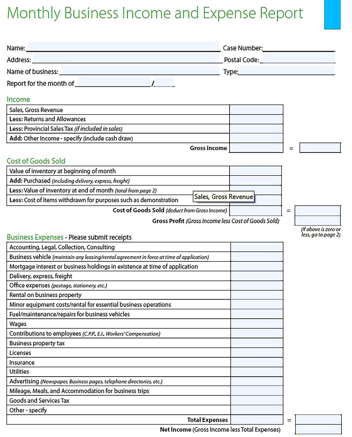 Sample Monthly Business Expense Report