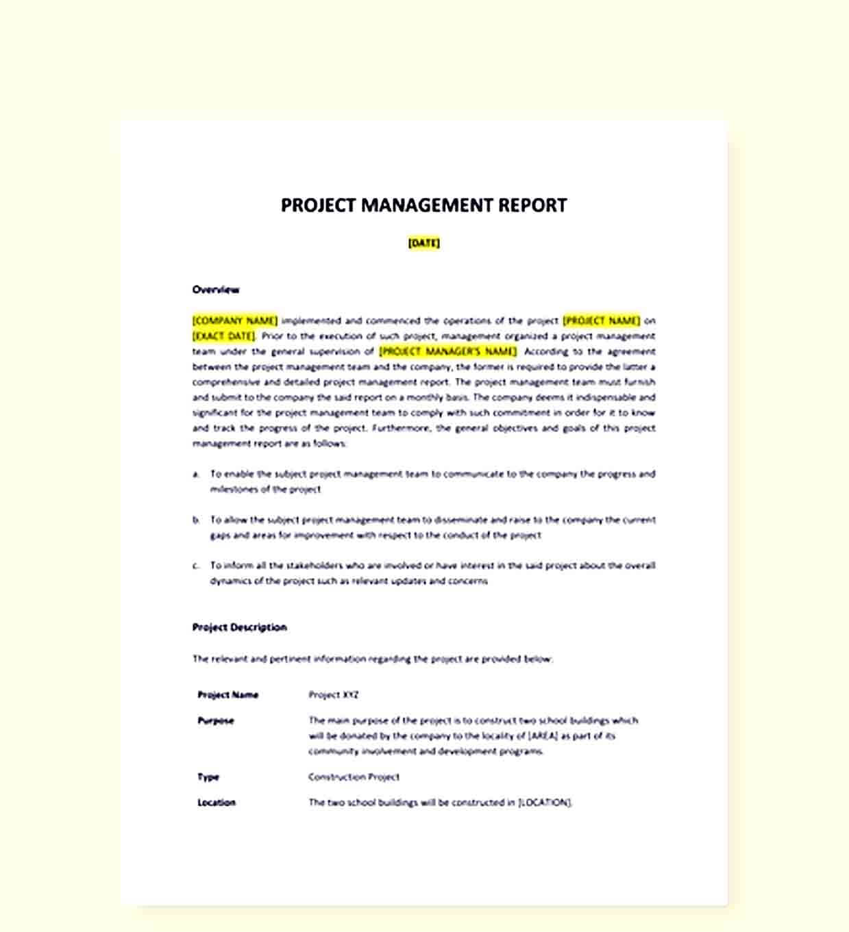 Sample Project Management Report