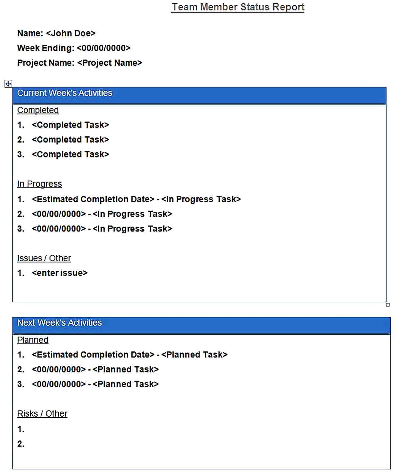 Sample daily report template word