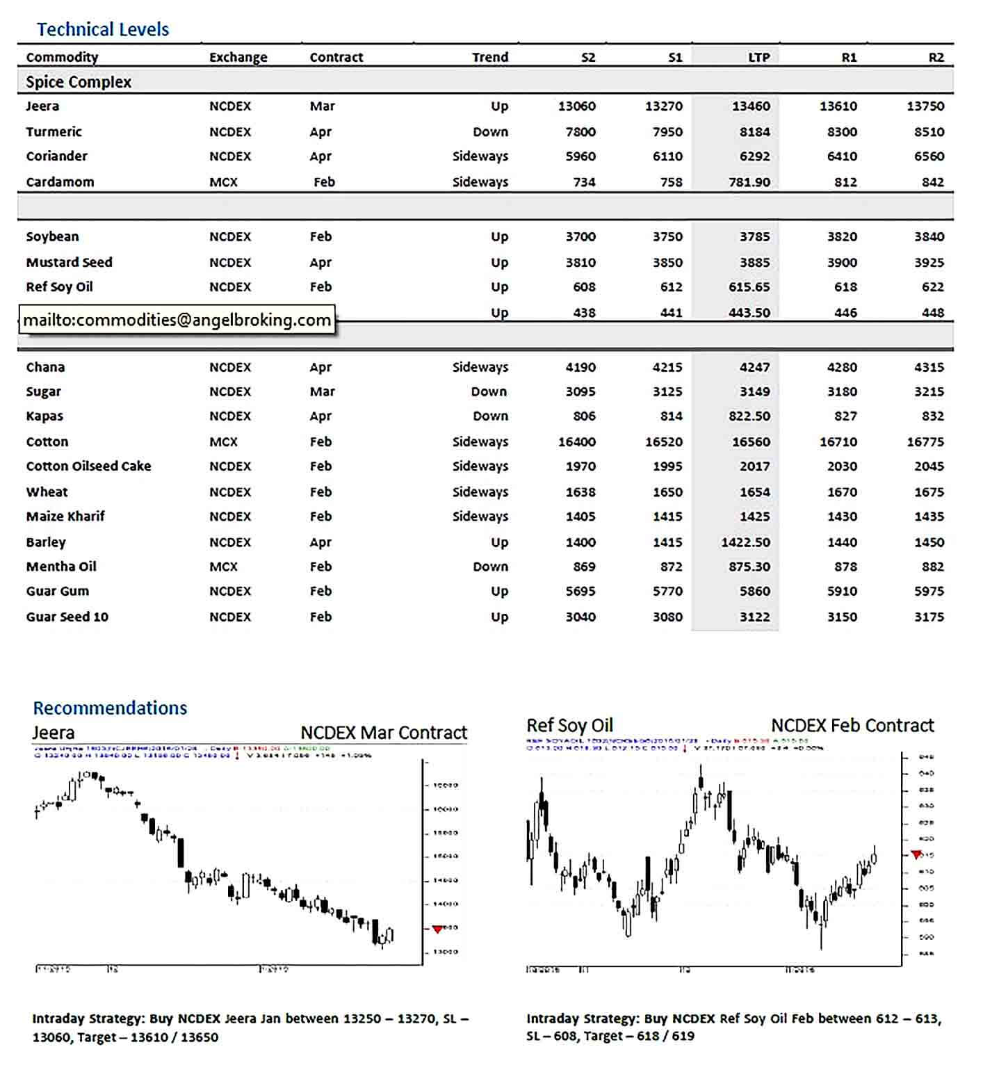 Sample Angel Commodity Technical Report