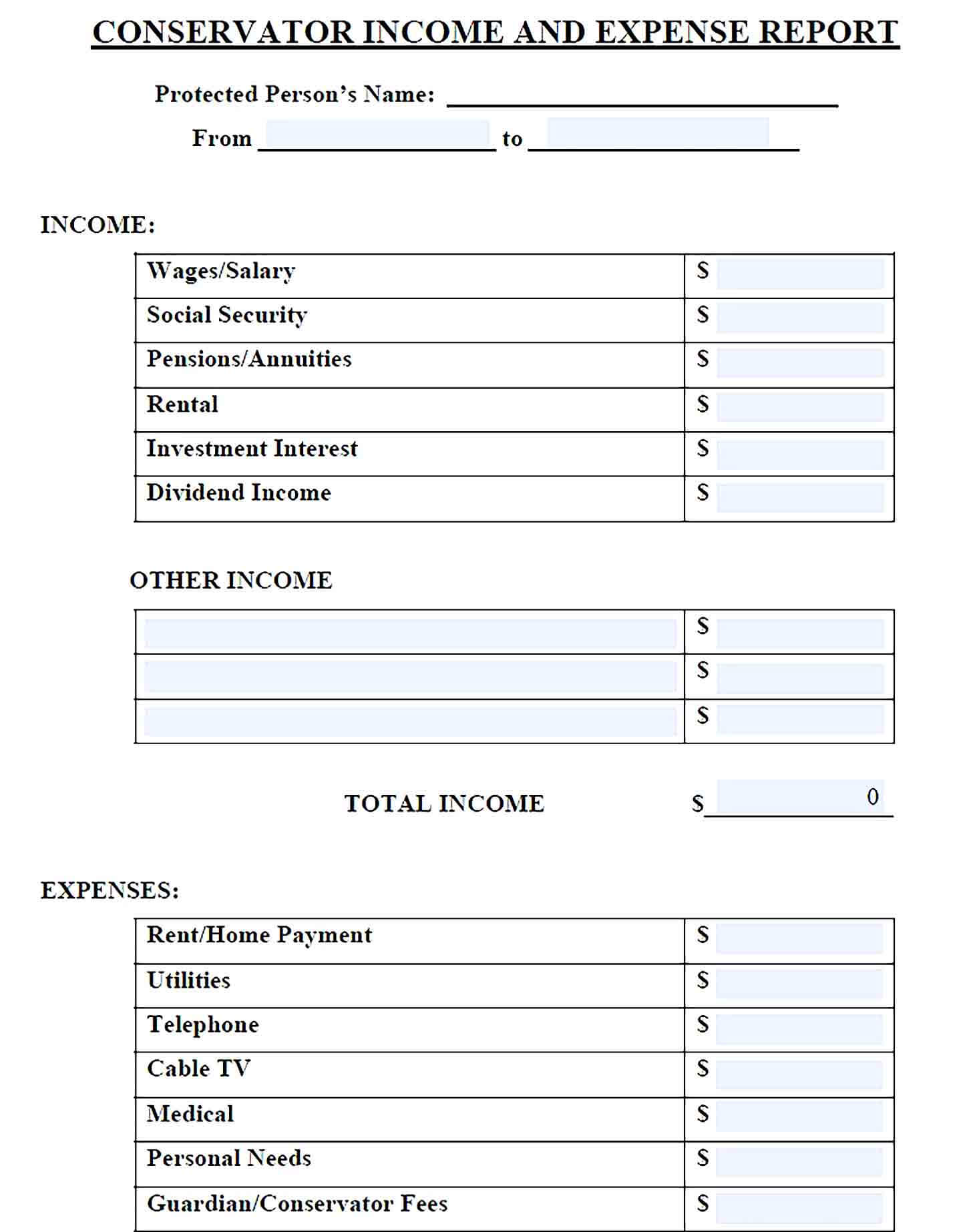 Sample Conservator Income And Expense Report