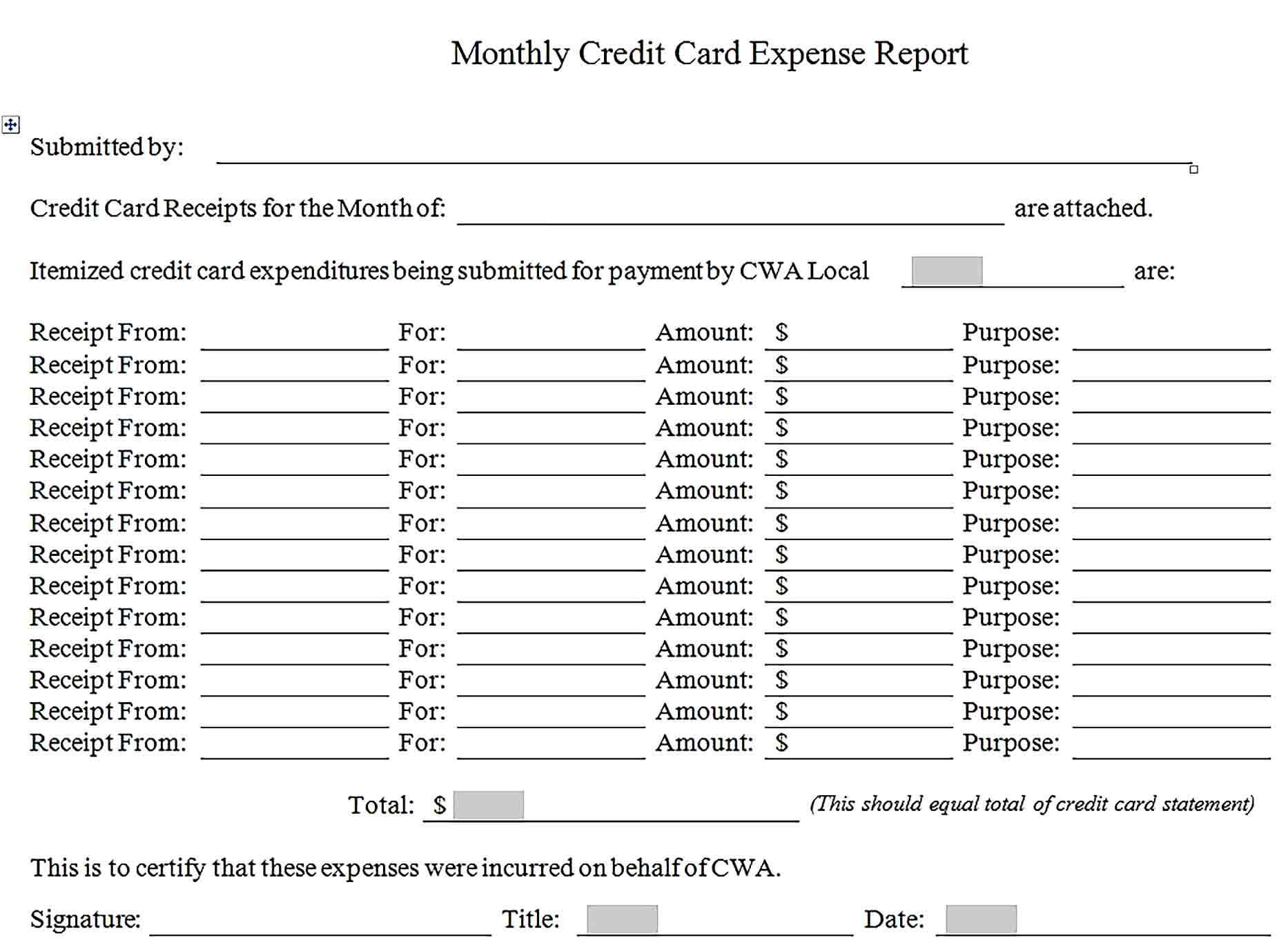 Sample Credit Card Expense Report Template
