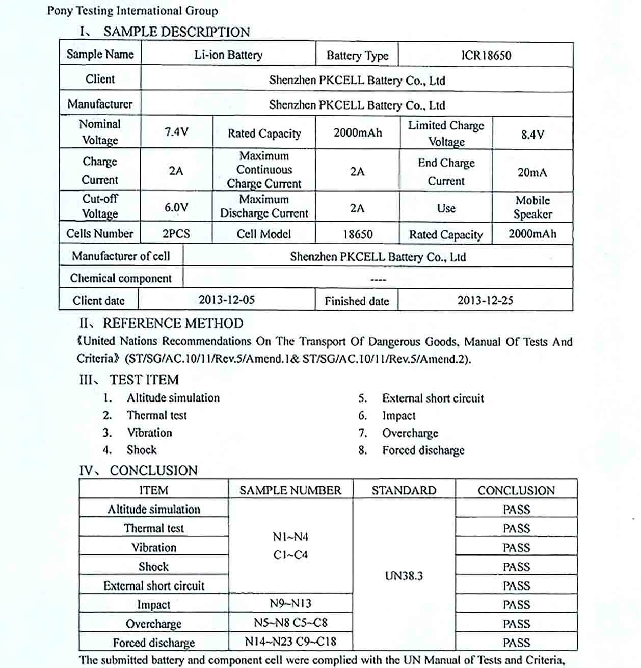 Sample Example of Test Report