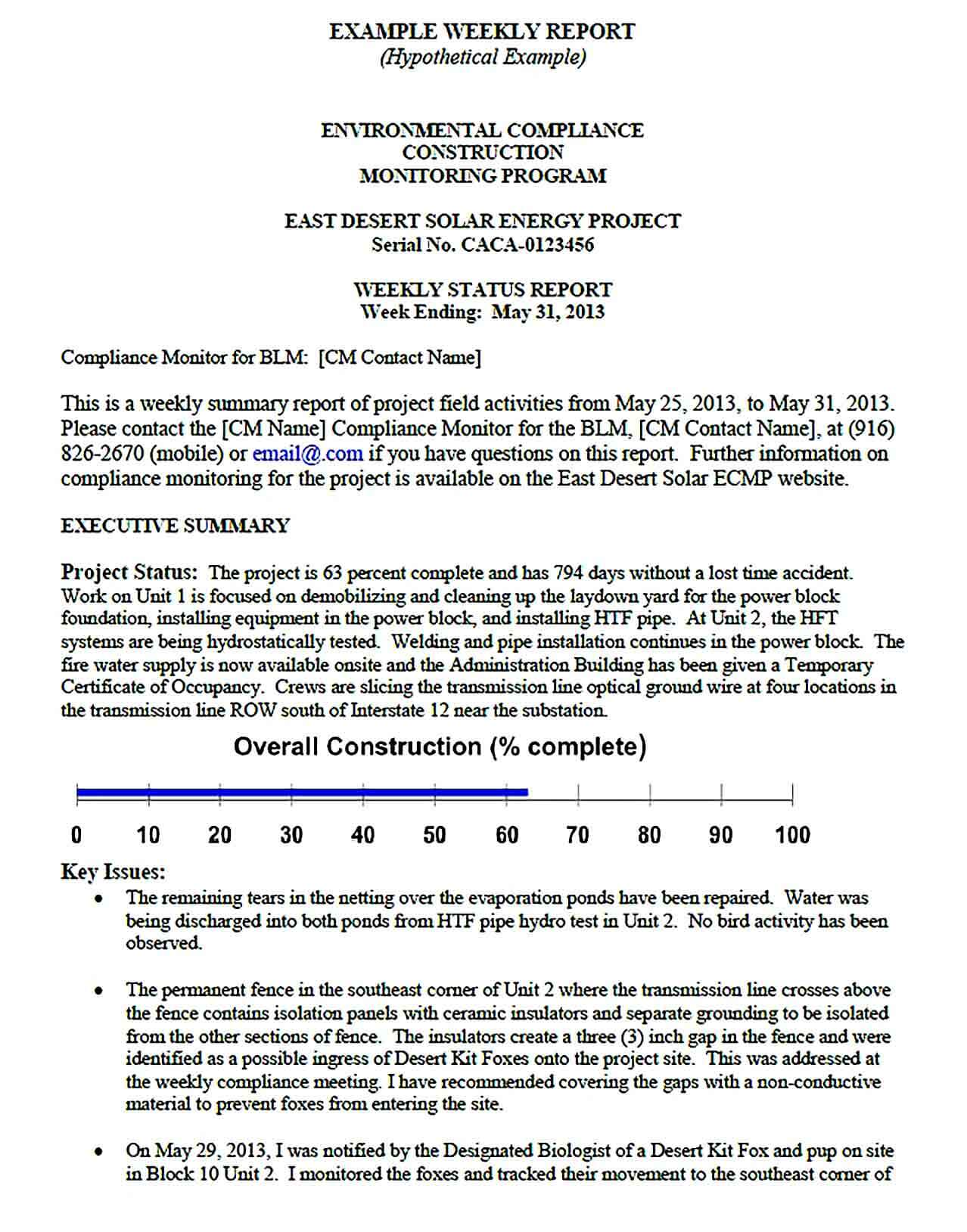 Sample Information Resources Management Weekly Report Template Sample