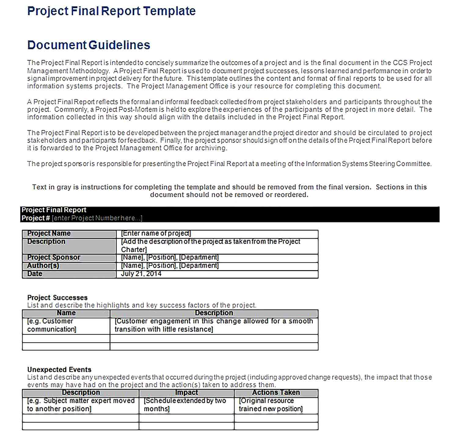 Sample Project Final Report Template
